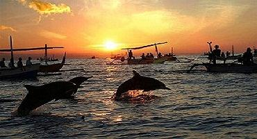 dolphin-bali-tours-bali-golden-tour