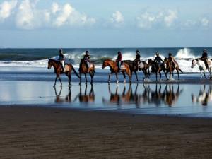 horseriding10
